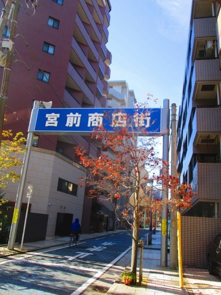 s-IMG_7295.jpg